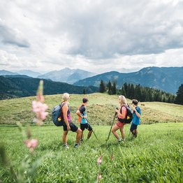 Hiking across alpine meadows on the trails of Hochkönig during summer in Ski amadé | © Hochkönig Tourismus GmbH
