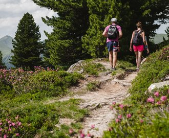 Hiking in Gastein valley - summer holidays in Ski amadé | © Gasteinertal Tourismus