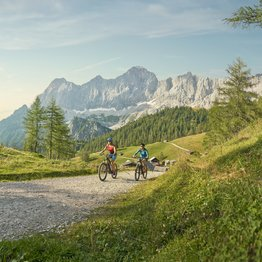 E-Biking and mountainbiking through the nature in Schladming-Dachstein in Ski amadé | © Peter Burgstaller